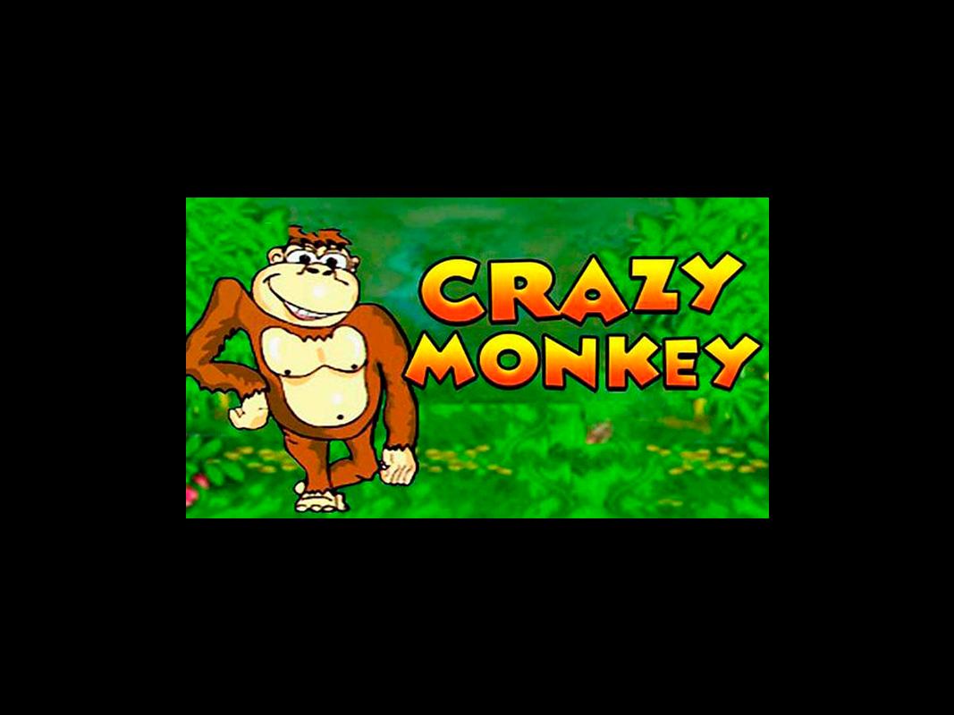 Скачать игровые автоматы crazy monkey на пк партнерская программа онлайн казино